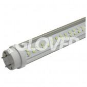 LED fénycső T8 19W Clear 5700-6500K