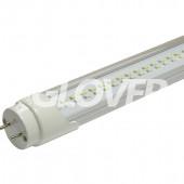 LED tube light T8 10W Clear 5000-6500K +15%