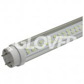 LED tube light T8 10W Clear 5700-6500K